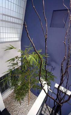 Lijo RENY Architect_Drs.Cijo Jos and Thushara Cijo Residence
