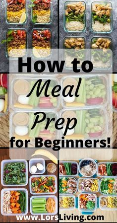 How To Meal Prep for Beginners!