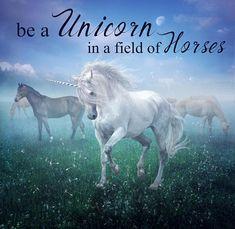 Unicorn Quotes, Unicorn Books, Unicorn Horse, Unicorn Art, Horse Quotes, Beautiful Unicorn, Magical Unicorn, Beautiful Horses, Unicorn Drawing