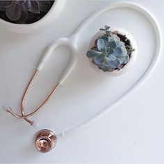 The moment you've been waiting for... The Rose Gold MD One is back in stock!  Hurry over to get it by Valentine's Day! We have very limited stock!  Thanks for the beautiful photo @helenthuu! #rosegold #rosegoldstethoscope