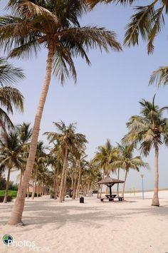 Dubai.......i WILL honeymoon there ;)