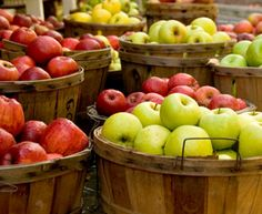 September is here, and it's time for picking apples! Here are 39 Trim Healthy Mama apple recipes so you can enjoy your apples and stay on-plan! Summer Drink Recipes, Summer Drinks, Hood River Fruit Loop, Pick Your Own Apples, Vegetable Stand, Organic Fruits And Vegetables, Apple Dumplings, Apple Harvest, Harvest Moon