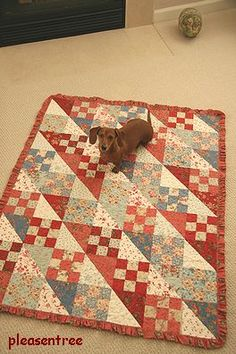 cute and so is the quilt!