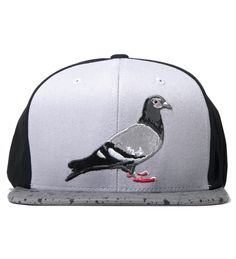 Because. Hey. Who doesn't need a pigeon hat?
