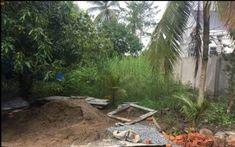 Bán đất mặt tiền tại Phường Phú Thứ, Cái Răng Nền cách DH Tây Đô khoảng 40m, ngay trung tâm y tế, ủy ban quận cái răng....Trên nền có cái nhà mặt tiền v