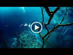 Mysterious Civilization under the Black Sea Black Sea, Ancient History, Romania, Civilization, This Is Us, Mystery, Youtube, Life, Outdoor