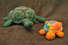 Turtles anyone? Here is a couple of different types.