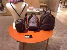 LOUIS VUITTON backpack- the one in the middle please!