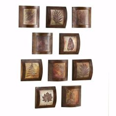 "Fossil Collage Wooden Wall Art, 10"" SQUARE, MULTI by Home Decorators Collection, http://www.amazon.com/dp/B0026I6II2/ref=cm_sw_r_pi_dp_swbFrb13KPZ2M"