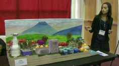 Middle school students compete in Future City Competition