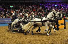 The London International Horse Show Olympia