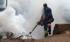 Dengue fever epidemic in Central America