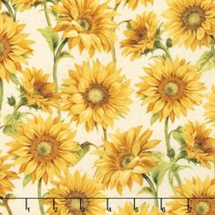 Follow the Sun - Large Packed Sunflowers Cream Yardage