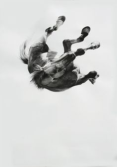 Falling by August by Michael Zavros || Charcoal on paper.