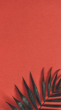 40 Super Cute Flowers and Fruit Wallpaper 40 Super Cute Flowers and Fruit Wallpaper . - 40 super cute flowers and fruits wallpapers 40 super cute flowers and fruits wallpapers, This image - Wallpaper Tumblr Lockscreen, Iphone Wallpaper Vsco, Disney Phone Wallpaper, Iphone Background Wallpaper, Cellphone Wallpaper, Wallpaper Quotes, Wallpaper Iphone Vintage, Lock Screen Wallpaper Iphone, Walpaper Iphone