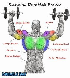 Shoulder Exercises - Standing Two Arm Dumbbell Presses | Muscle Day