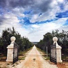 Foto scattata a Cantine Tormaresca da Bois H. il 10/16/2013