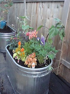 Different Ideas For Gardening in Containers Photo 5