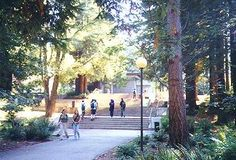 UCSC is second smallest of the general UC campuses in terms of population, with 12,983 full-time undergraduate students, but the second largest in terms of area, at 2,950 acres. However, it is almost an invisible campus. It is difficult to see the campus buildings because they are hidden among the towering redwood trees. Different