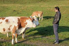 Making off, Werbedreh Saalfelden Leogang 2013 Tv Commercials, Brand New, Animals, Animales, Animaux, Tv Adverts, Animal, Animais