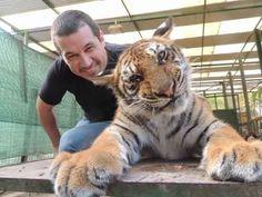 Scandalo ad uno zoo in Argentina: animali drogati per far scattare selfie ai visitatori, ecco le foto #animali #zoo #argentina