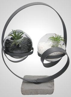 Yin Yang Globe Terrarium