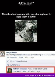 XD any one else think of hetalia?<<Russia is just a big teddy bear. Tumblr Funny, Funny Memes, Hilarious, Grimgar, Haha, Comedy, Thinking Day, History Memes, Laugh Out Loud
