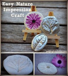 Easy and FUN Nature Craft - Plaster Impressions!