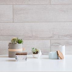 Explore the smoother side of concrete.  #concrete #succulents #DanishDesign #NordicDesign #RoveConcepts #Kure
