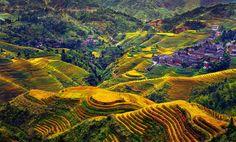 """Landscape China by Thierry Bornier"" by Tara Kerman"