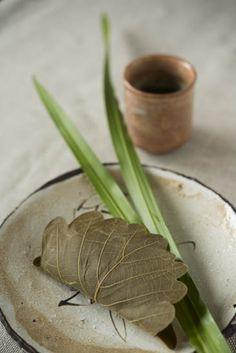 Kashiwa-mochi, Japanese rice cake wrapped with an oak leaf 柏餅