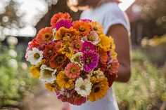 Pink peonies, yellow freesia, and white feverfew make a lovely romantic bouquet. Emily Carter Floral Designs, Freeport, ME. {Photo by Meredith Perdue Photography} Free Wedding, Our Wedding, Wedding Venues, Wedding Photos, Wedding Planning Guide, Wedding Paper Divas, Table Flowers, Gardening, Pink Peonies