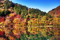 周辺の山々が湖面に映る様子は随一!色とりどりの景色が楽しめます。
