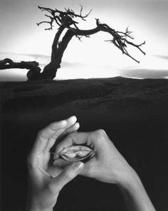 Jerry Uelsmann A Level Photography, Photography Projects, Creative Photography, Jerry Uelsmann, Photo Sculpture, Surrealism Photography, Hand Art, Heart And Mind, Photomontage