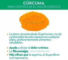 Para controlar el dolor crónico, fibromialgia   conoce las maravillosa propiedades de esta planta... #curcuma #palillo #dolor #fibromialgia #ibuprofeno #naproxeno #remedios #plantas #india