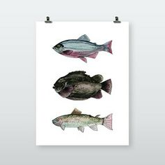 by Philip Liljenberg – ArtworkHeroes Crab Art, Hero, Wall Art, Illustration, Artwork, What's Cooking, Kitchen Interior, Baby Blue, Fish