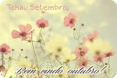 Bem vindo outubro :) mês do meu niver