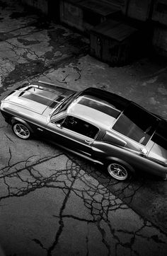 """Ford Mustang Shelby GT500 """"Eleanor"""" by Martin Cyp"""