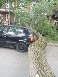 Luckiest car ever