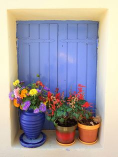 Window pots ~ Kephalonia Island, Greece  by saltburger, via Flickr