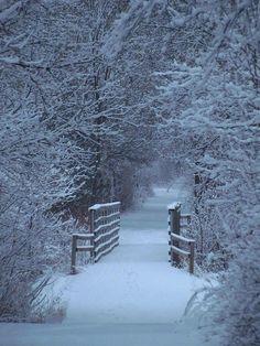 Winter White Portal