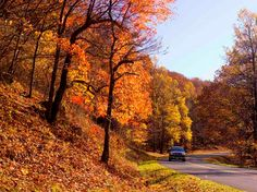 Fall Drives on the Blue Ridge Parkway through Virginia's Blue Ridge