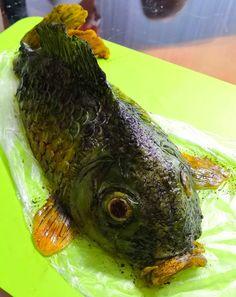 Modeling, Fish, Meat, Cake, Modeling Photography, Pisces, Kuchen, Models, Torte