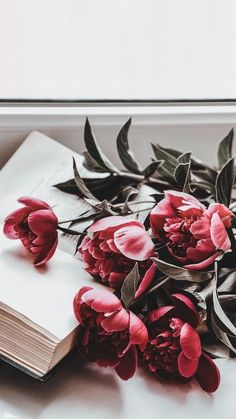 wallpaper for phone Flower Iphone Wallpaper, Pastel Wallpaper, Aesthetic Iphone Wallpaper, Nature Wallpaper, Aesthetic Wallpapers, Wallpaper Backgrounds, Phone Backgrounds, Dulux Valentine, Flower Background Wallpaper