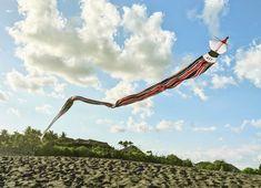A Balinese kite