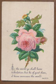 Bright Victorian Religious Card Rose Scripture