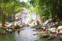 Na Muang Waterfall, Koh Samui Na Muang is one of the more impressive and well developed of Samui's waterfall locations, situated about 10km from the port town of Nathon. There are actually two waterfalls to see, the first of which is easily reached by car while the second is further upstream and is reached by a short walk. For More Information Please Contact Our THH Team #Namuang #waterfall #kohsamui #island #thailand #asia