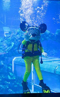 You never know who might be swimming around at the Seven Seas Lagoon!
