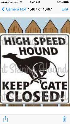 Yep! Kaia bear is a speed demon. ❤❤❤