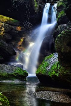 Falls at Dismals Canyon, Alabama. Dismals Canyon is a sandstone gorge near Phil Campbell in Franklin County, Alabama. It was declared a National Natural Landmark in May 1974. Dismals Canyon is one of only a few places where insects called dismalites ('glowworms') can be found. (V)